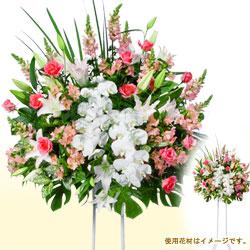スタンド花お祝い一段(ピンク系、胡蝶蘭入り)
