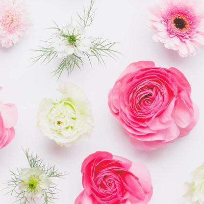 365日の誕生花カレンダー|誕生日プレゼント・ギフト特集