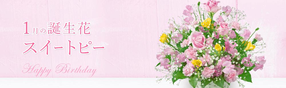 花キューピットの1月の誕生花