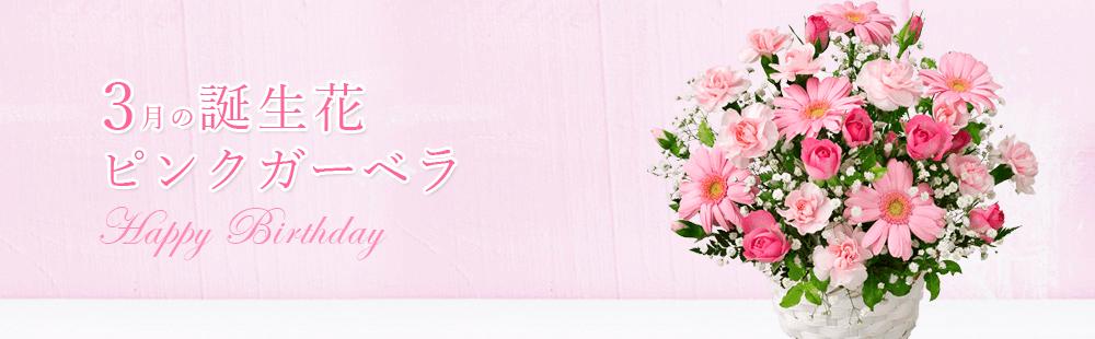 花キューピットの3月の誕生花