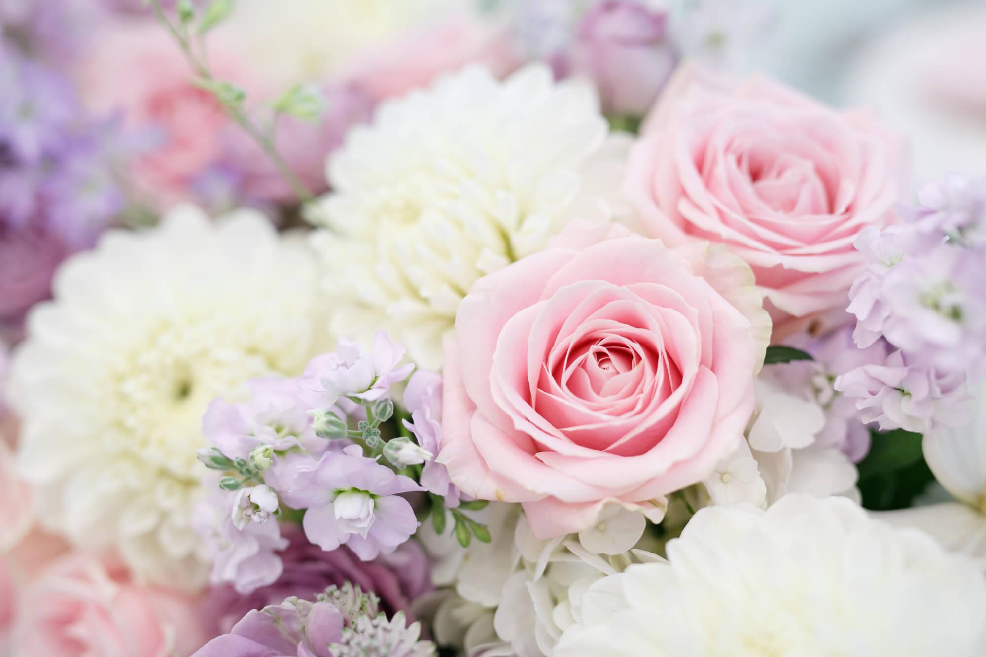 愛を込めて女の子へ贈りたい誕生花3選
