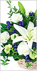 【お盆】色の入ったお供え花