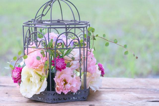 2位:トルコキキョウ | 結婚記念日に贈りたい【花言葉】ランキング特集!