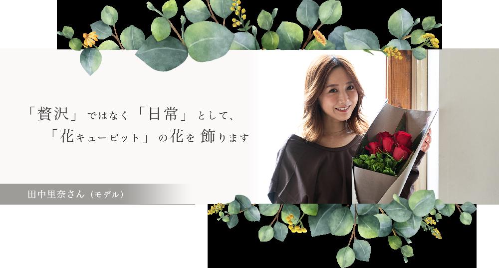 田中里奈さん(モデル)