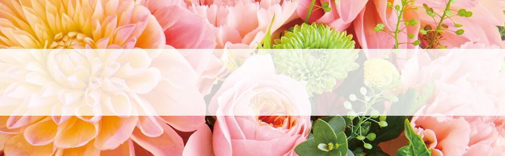 花キューピットの敬老の日のギフト・プレゼント特集