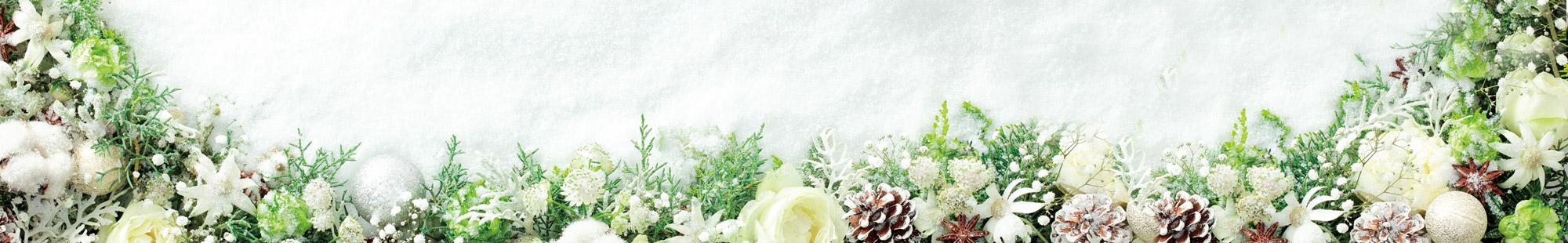 花キューピットの冬の花贈り特集2020