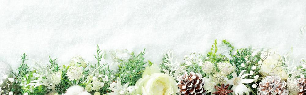 花キューピットの冬の花贈り特集