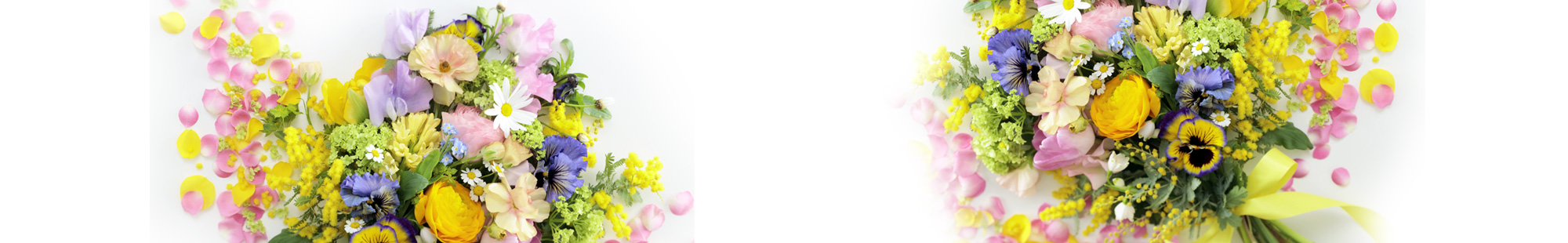 花キューピットの春の花贈り特集2021