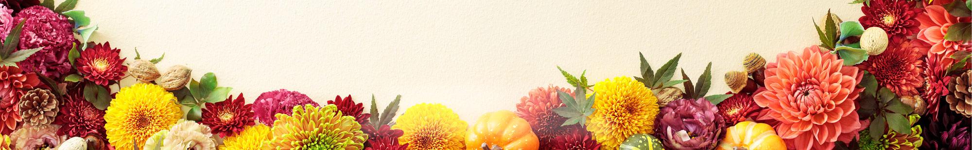 花キューピットの秋の花贈りにおすすめ!人気のプレゼント特集 2019