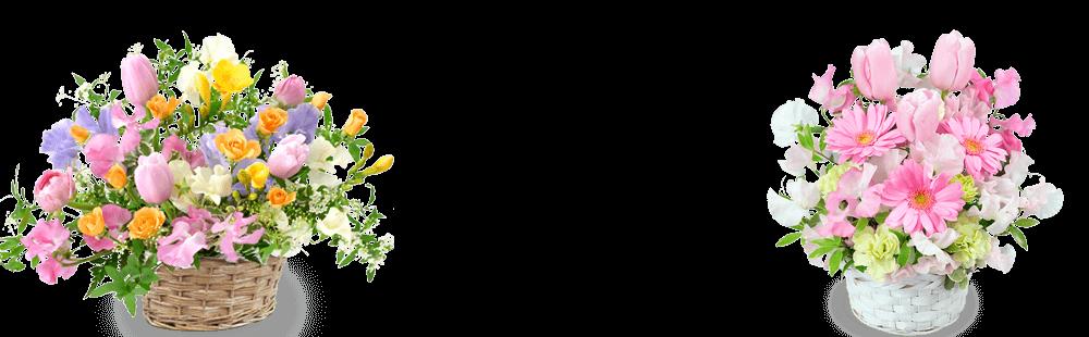 花キューピットの春の誕生日プレゼント特集