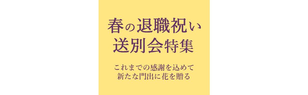 花キューピットの春の退職祝い・送別会