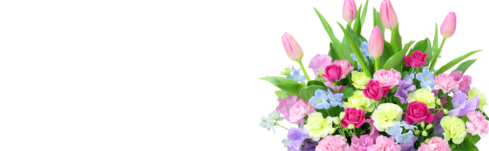 花キューピットの2月の誕生花