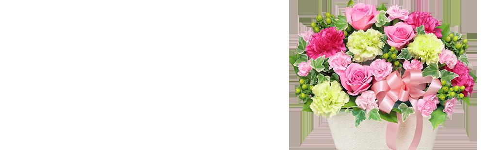 花キューピットの5月の誕生花