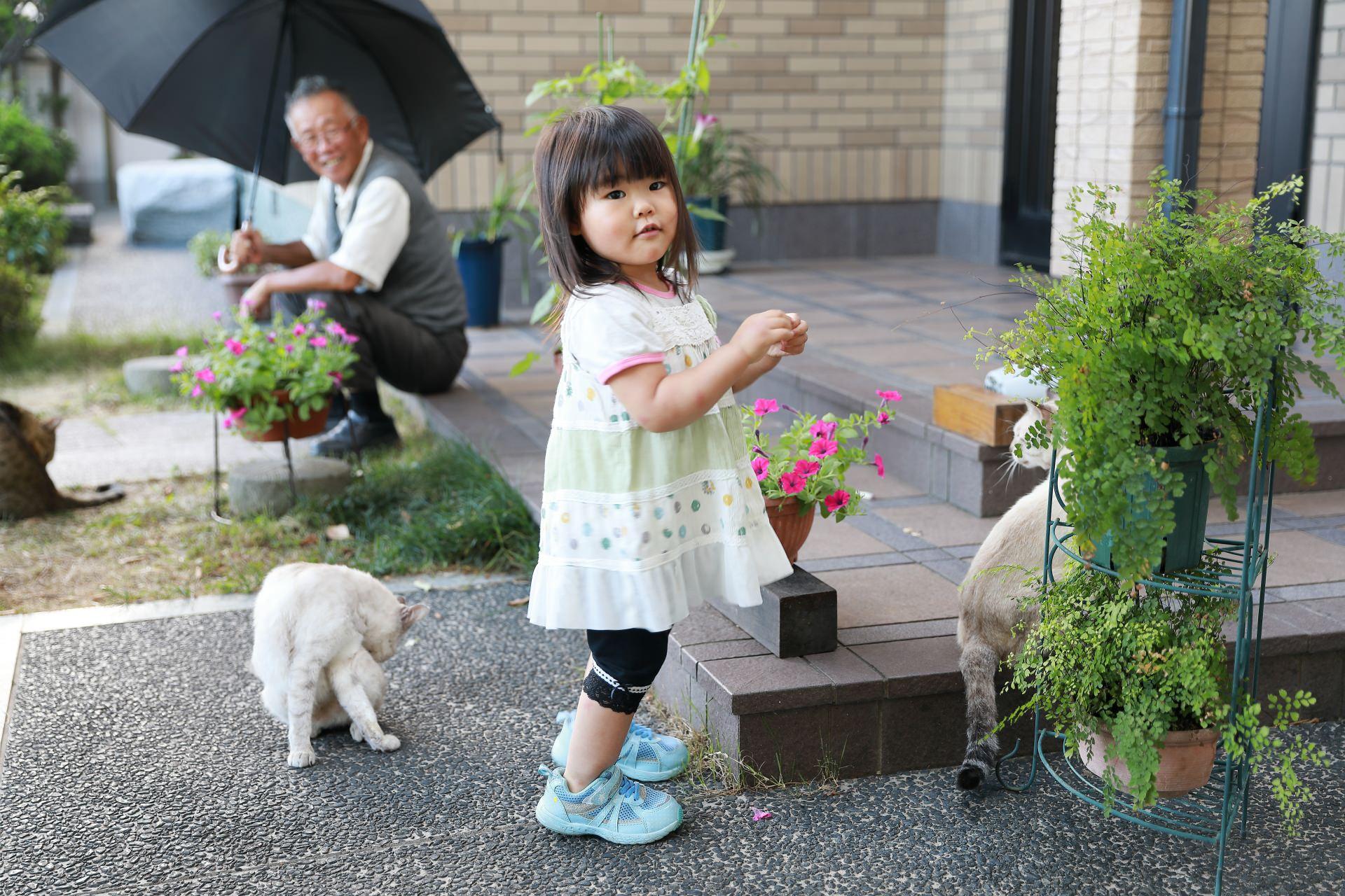 敬老の日には花鉢植えを贈って日々の楽しみをプレゼント