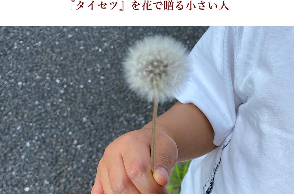 『タイセツ』を花で贈る小さい人ーきなこさんの敬老の日エッセイ