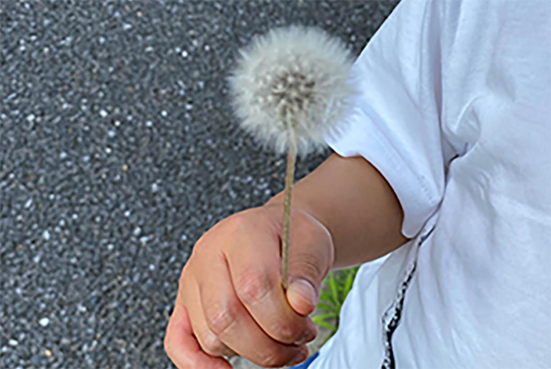 『タイセツ』を花で贈る小さい人(著者:きなこ)