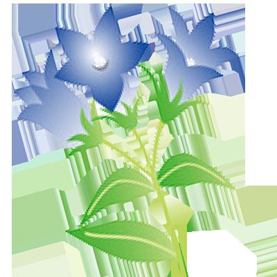 花の種類から探す|花キューピットの敬老の日におすすめ!人気のフラワーギフト特集 2020
