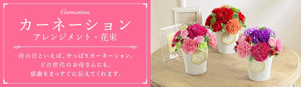 カーネーション アレンジメント・花束