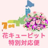 花キューピット特別対応便|母の日プレゼント特集2019