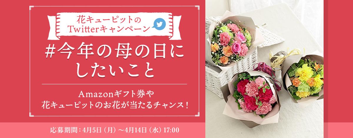 花キューピットのTwitterキャンペーン!Amazonギフト券やお花が当たる|フラワーギフト通販なら花キューピット