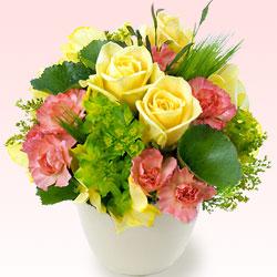 【お祝い】黄バラのアレンジメント