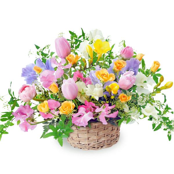 【春の誕生日】カラフルなアレンジメント 111029 |花キューピットの春の誕生日特集