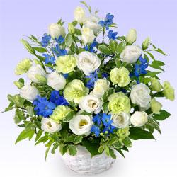 当日配達特急便・お供え|お供え・お悔やみの花を選ぶ