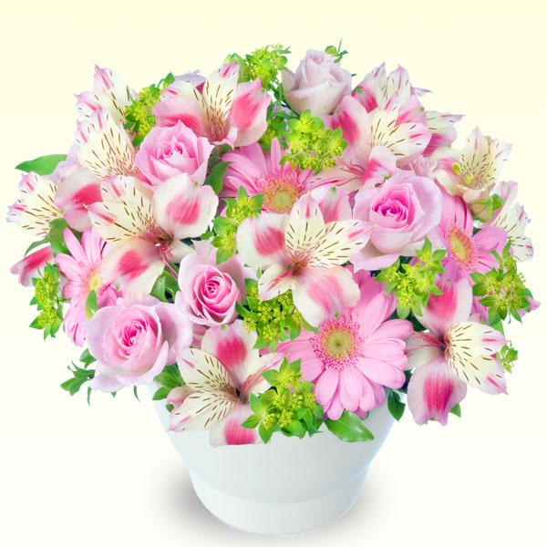 【誕生日フラワーギフト】ピンクアルストロメリアのボールコンポート