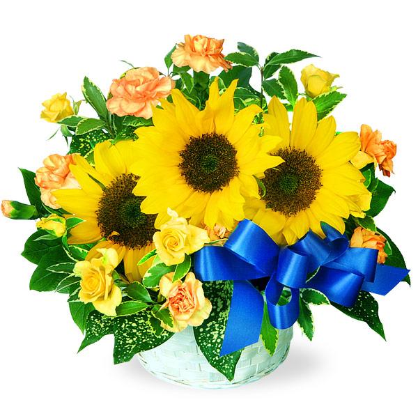 【父の日】ひまわりのリボンアレンジメント 511038 |花キューピットの父の日フラワーギフト特集2020