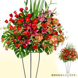 【スタンド花・花輪(開店祝い・開業祝い)】スタンド花お祝い一段(赤系)