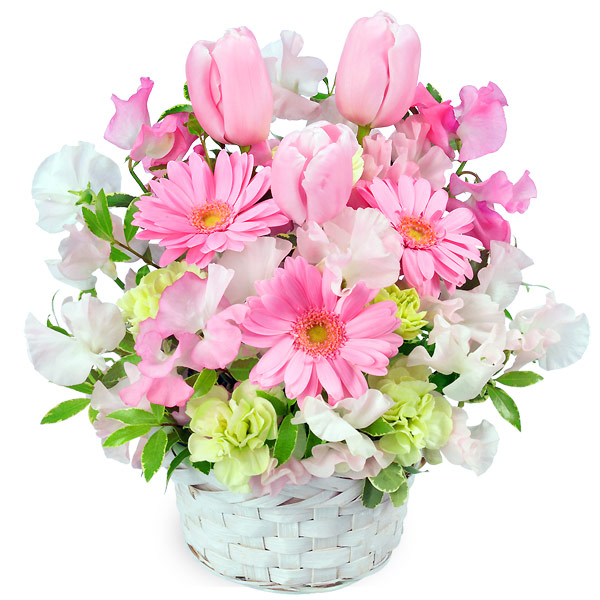 【1月の誕生花(スイートピー等)】春のピンクアレンジメント(ピンク)