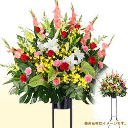 開店・開業祝いのお花|お祝いの花の特集