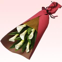 【花束(法人)】カラーの花束