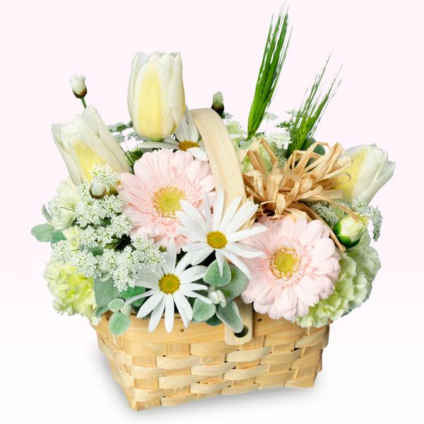 【お誕生日祝い(法人)】春のガーデンバスケット