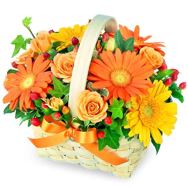 【秋の花贈り】オレンジ&イエローのアレンジメント 511335 |花キューピットの2019秋のお祝いプレゼント特集