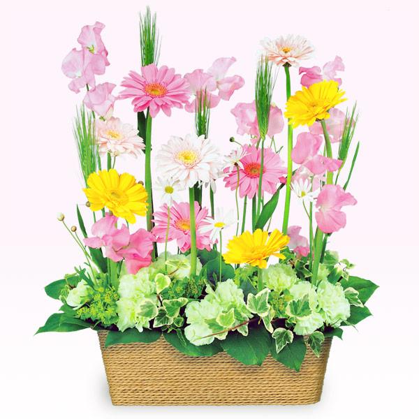 【3月の誕生花(ピンクガーベラ等)】春のミックスアレンジメント