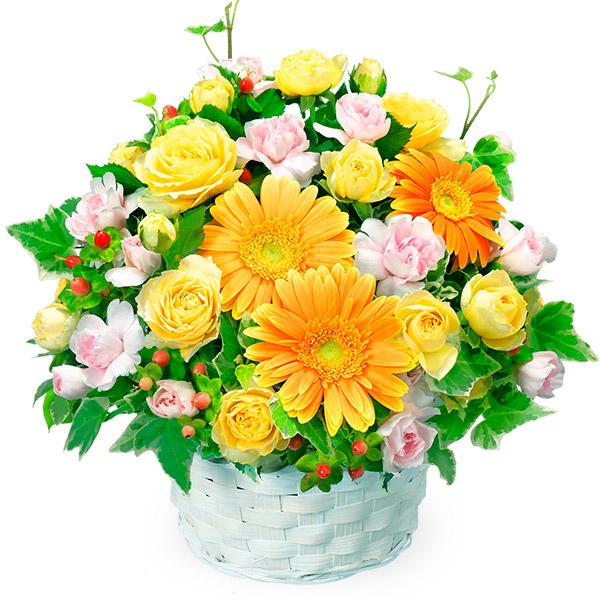【誕生日フラワーギフト】オレンジガーベラのアレンジメント