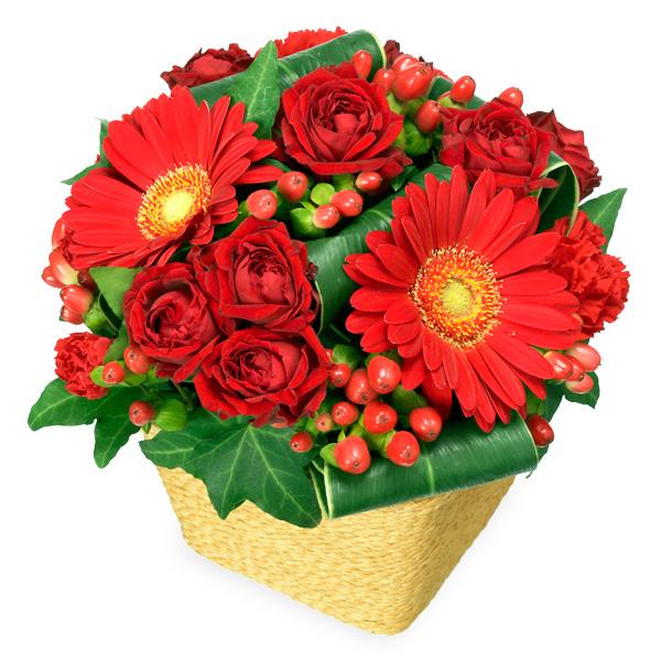 【クリスマスフラワー ランキング】赤ガーベラと赤バラのアレンジメント