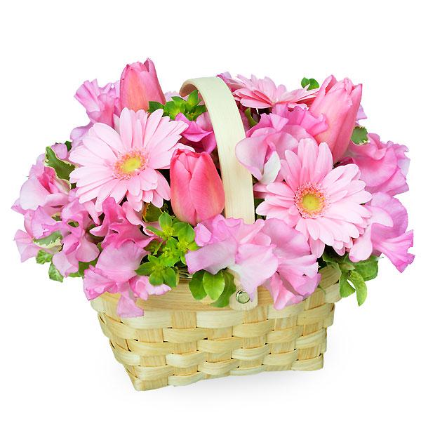 【2月の誕生花(チューリップ等)】チューリップとガーベラのバスケットアレンジメント