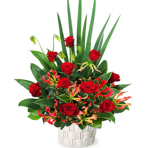 【誕生日フラワーギフト】赤バラの豪華なアレンジメント