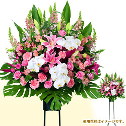 【スタンド花・花輪(開店祝い・開業祝い)】お祝いスタンド(ピンク系)1段