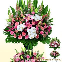 【スタンド花・花輪(開店祝い・開業祝い)】お祝いスタンド(ピンク系)2段