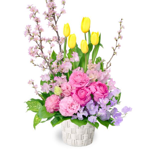 【2月の誕生花(チューリップ等)】チューリップと桜のアレンジメント