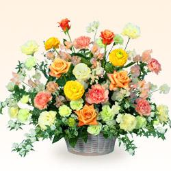 【開店祝い・開業祝い(法人)】バラとスイートピーのアレンジメント(イエロー)