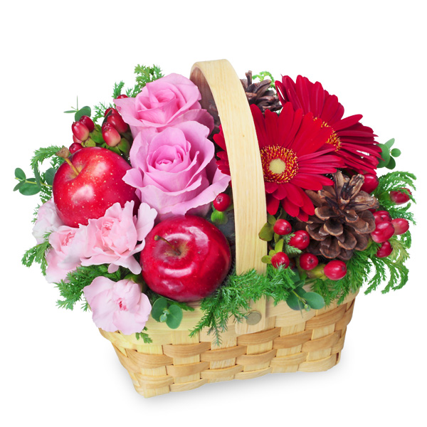 【冬の花贈り特集】ピンクバラとガーベラのウッドバスケット 511719 |花キューピットの2019冬の花贈り特集特集
