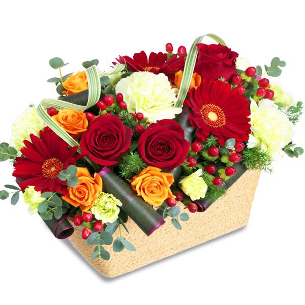 【お祝い(法人)】赤バラのスクエアバスケット