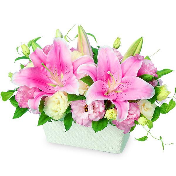 【予算で選ぶ 5000円から(法人)】ピンクユリのアレンジメント