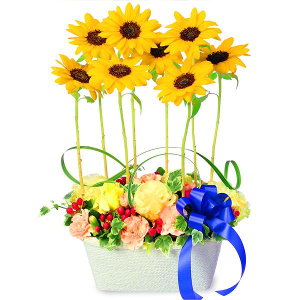 【ひまわり特集】ひまわりのモダンアレンジメント 511763 |花キューピットのひまわり特集2020