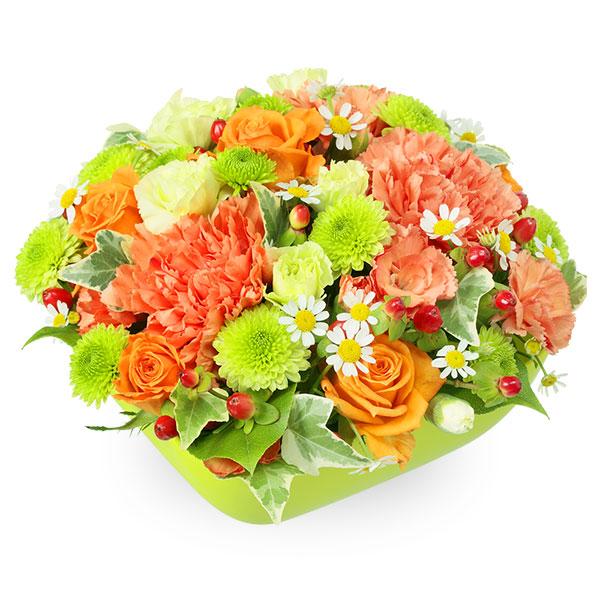 【お祝い】オレンジバラとカーネーションのアレンジメント