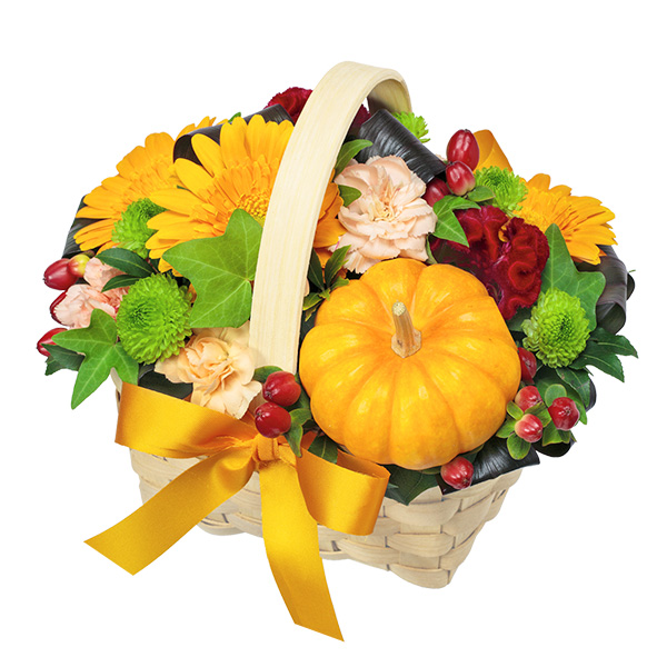 秋のお祝いTOP|秋の花贈り